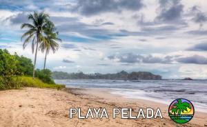 pelada playa